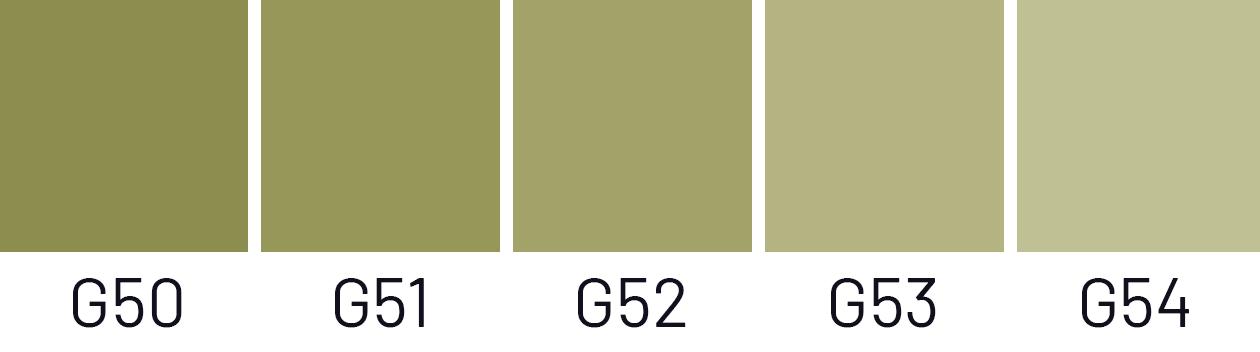 svetlost55